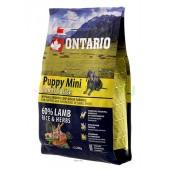 ONTARIO корм для щенков малых пород с ягненком и рисом (Puppy Mini Lamb & Rice)