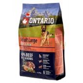 ONTARIO корм для собак крупных пород с говядиной и рисом (Adult Large Beef & Rise)
